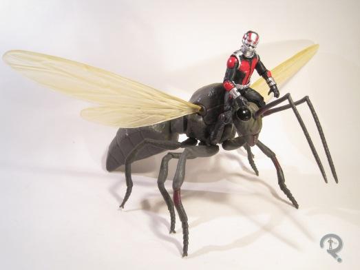 AntMan&Ant1