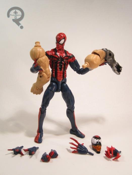SpiderBen5